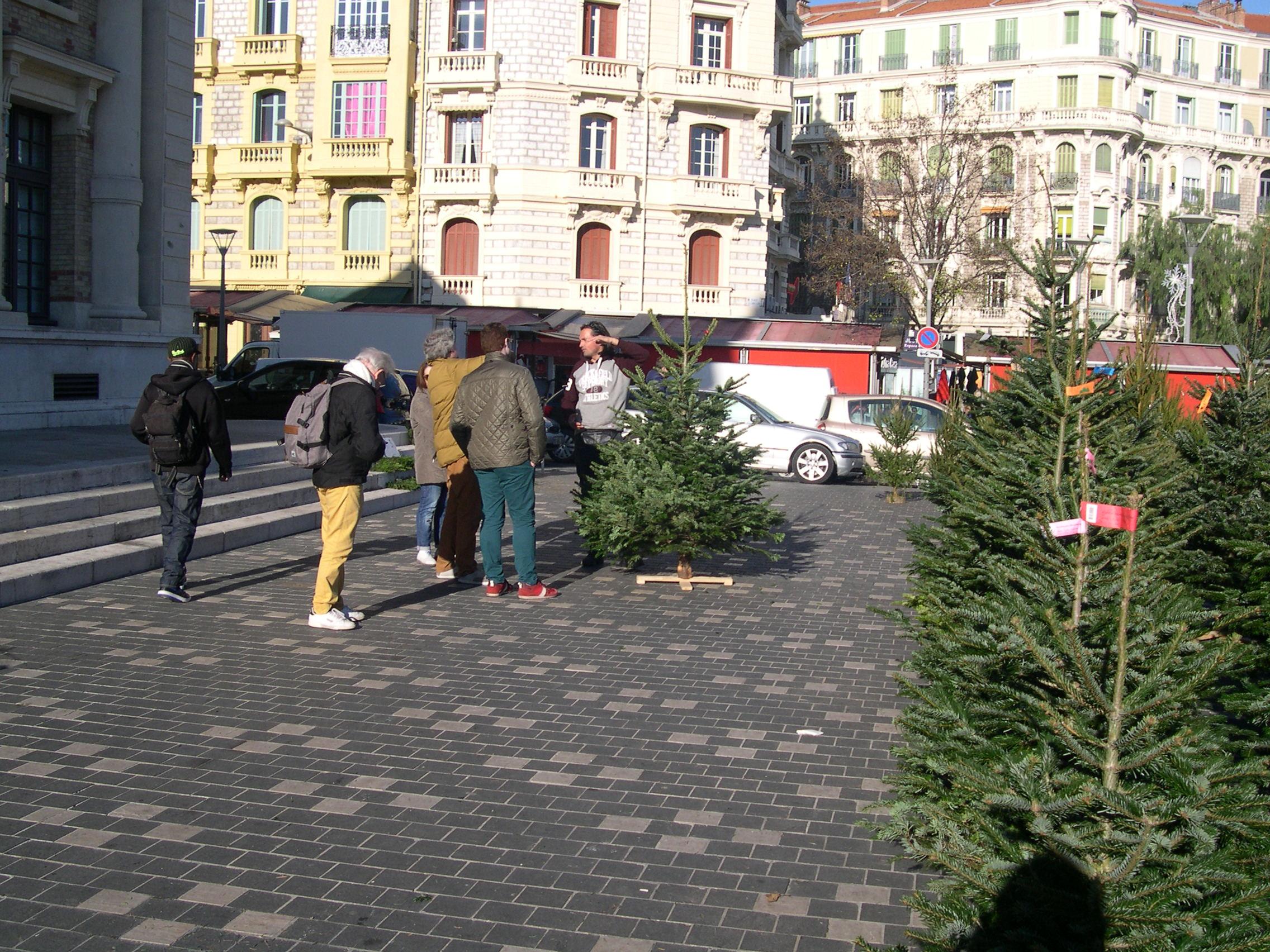 arne markussen juletraer23